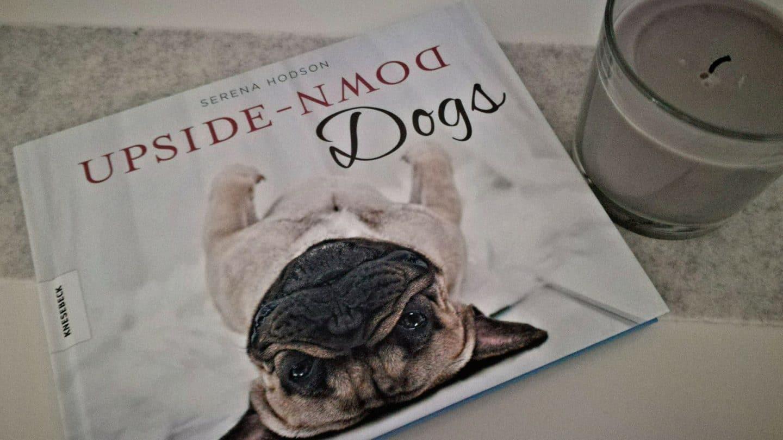 Upside Down – DOGS von Serena Hodson