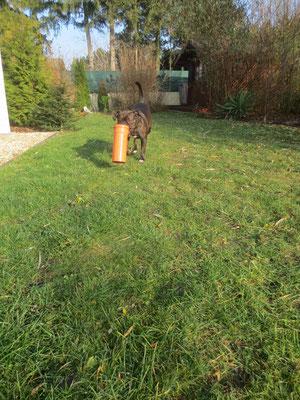 mit Hund im Garten