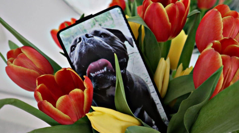 Mit personalisierter Handyhülle starte ich in den Frühling