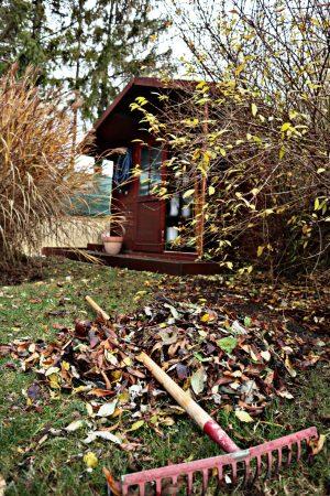 Winterfester Garten: Unsere Gartenpflege im Herbst